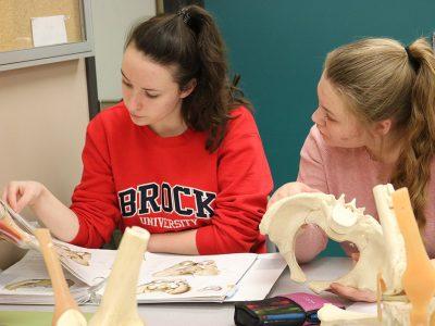 Students studying artificial bones