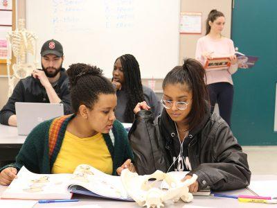 Students examining artificial bones