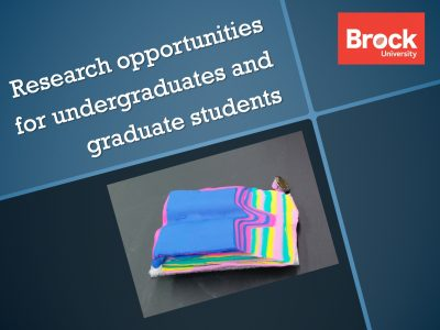 Research opportunities for undergraduates and graduate students