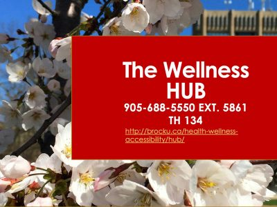 The Wellness HUB phone and website