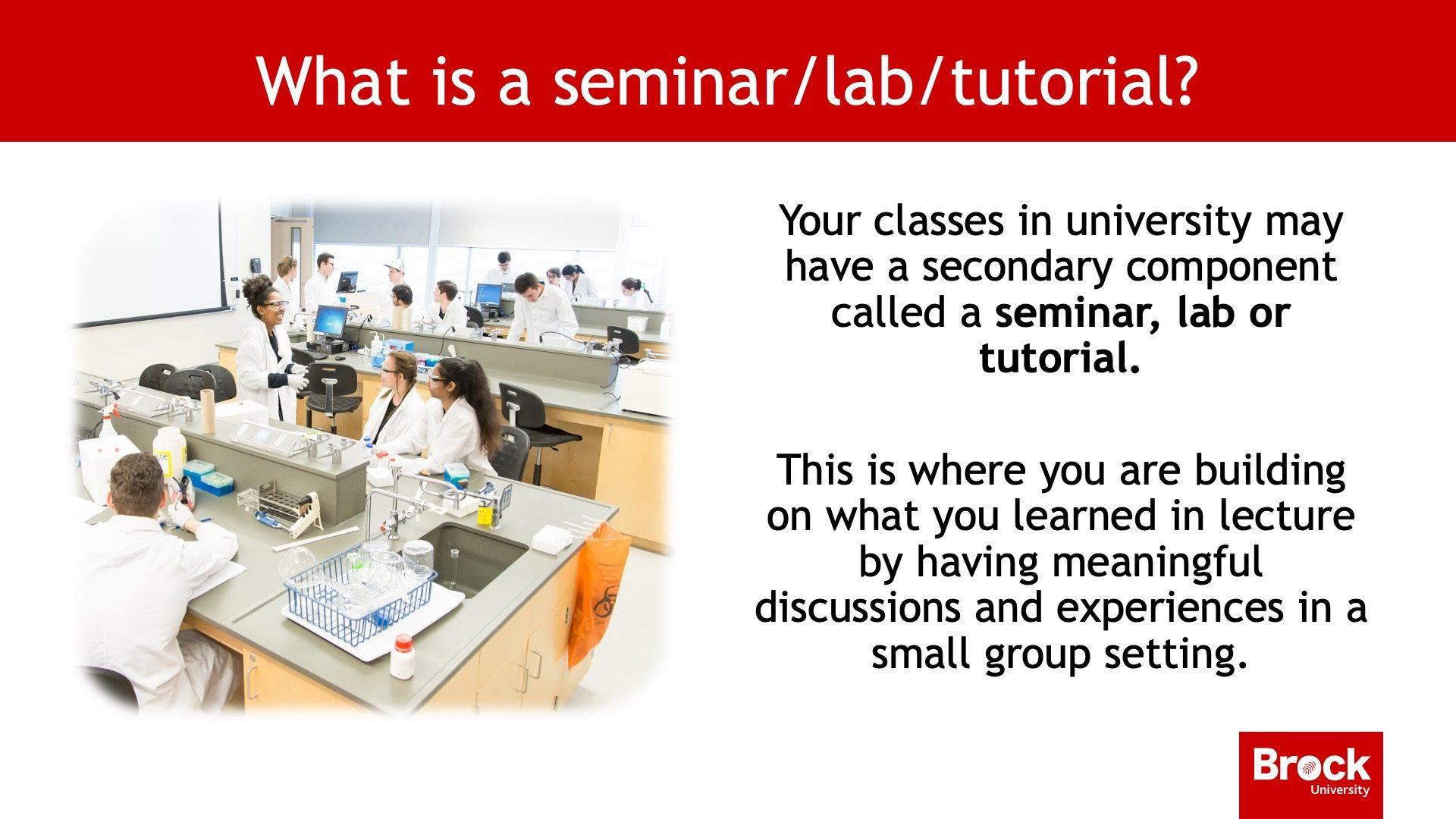 What is a seminar/lab/tutorial?