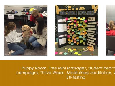 The Puppy Room, and other services offered