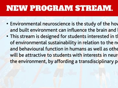 Neuroscience Environment Stream Slide