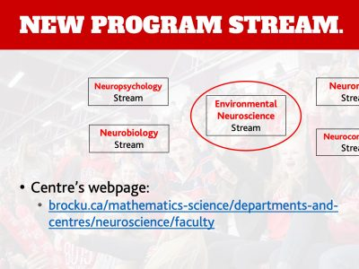 Neuroscience Environmental Stream Slide