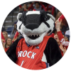 Boomer the Badger